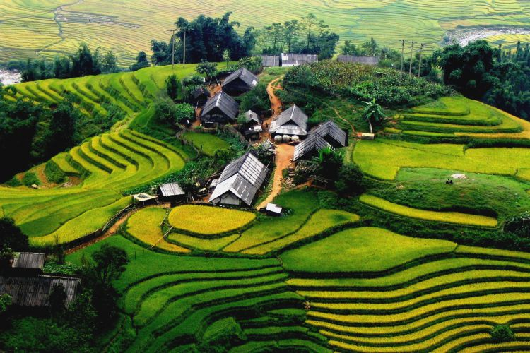 Cat Cat - Ham Rong - Lao Chai - Ta Van - Fansipan Tour 3 Days 2 Nights (By Bus)