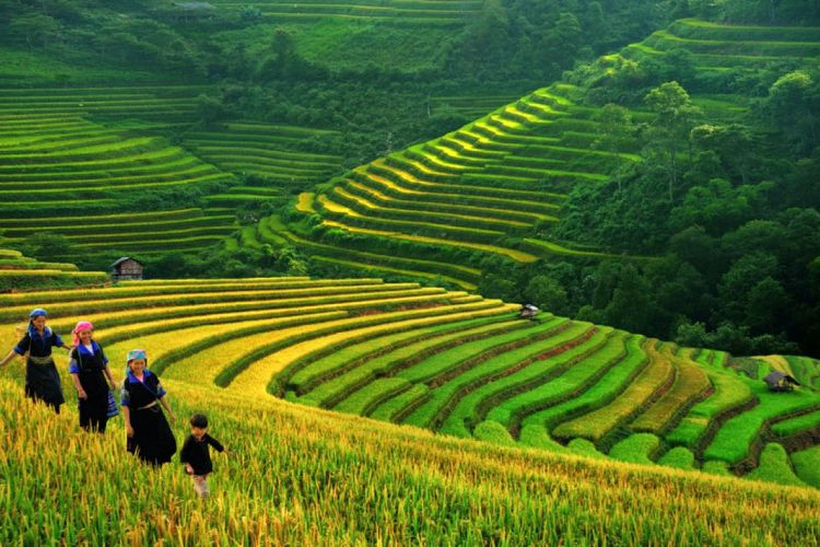 North Vietnam Mountain Paradise 7 Days 6 Nights